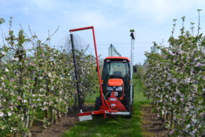 Automatisierte Blütenausdünnung SmaArt
