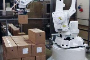 Individuell programmierbarer Palettierroboter